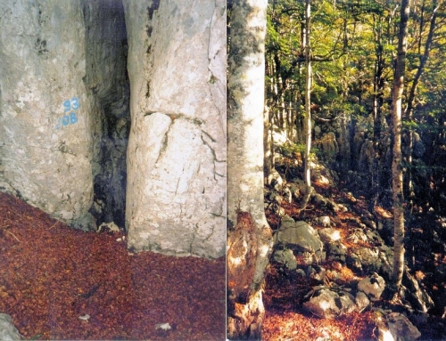 Lovričija jama I. pit – Biokovo