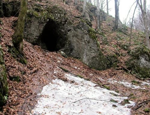 Peştera din Pereţii Corlatului cave – Munţii Bihorului