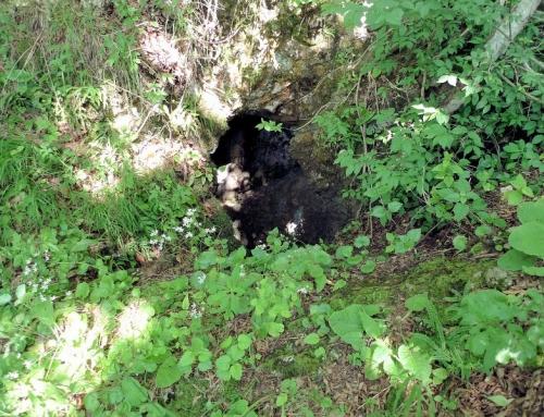 Jalovica jama pit – Goljama Zeljazna, Trojanska planina