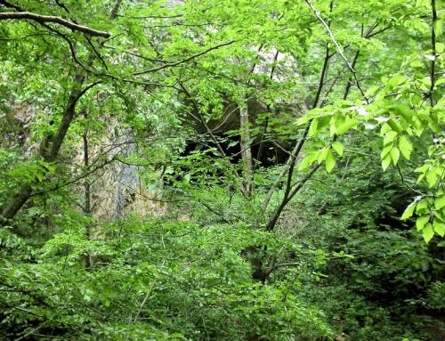 Topla peshtera cave – Goljama Zeljazna, Trojanska planina