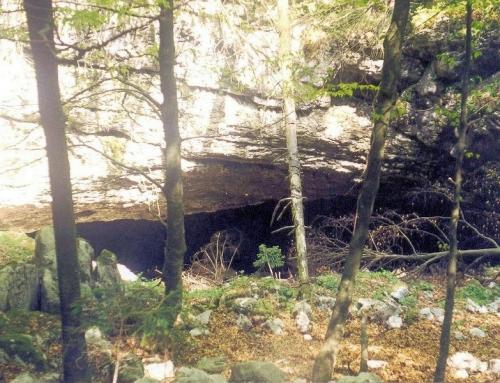 Ledenica-Dol cave – Trnovski Gozd